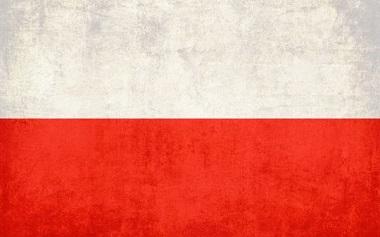 Услуги перевода на польский